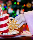 5 adornos navideños caseros